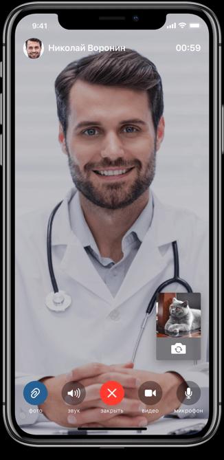 консультация с ветеринаром онлайн