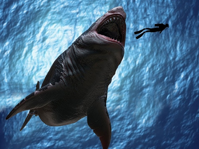 Акула Мегалодон фото