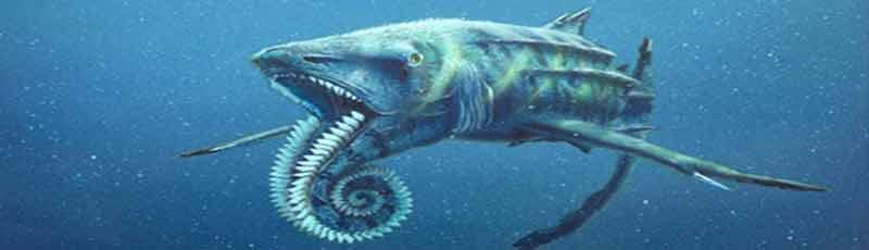 Факты о древних акулах