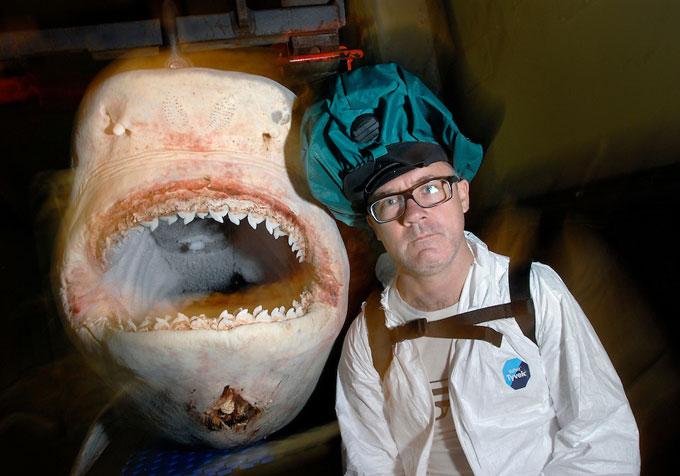 Дэмьен Херст и акула в формалине