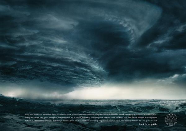 Креативная реклама WildAid: Убийство акул вызывает ураганы