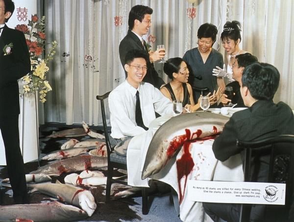 Свадьба в Гонк-Конге - традиционный суп из плавников акулы