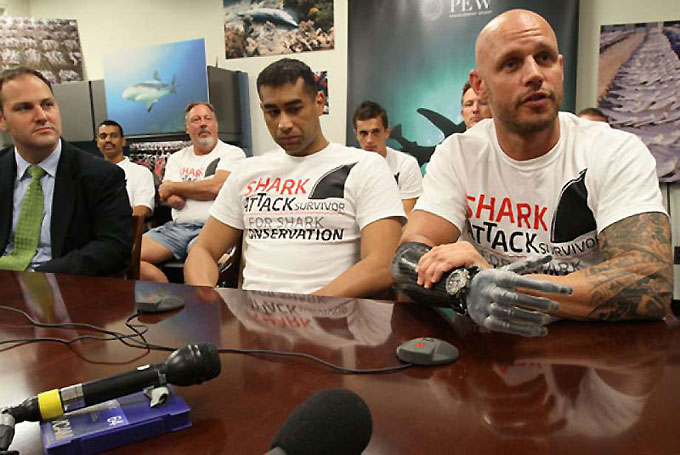 Pew - Жертвы акул защищают акул