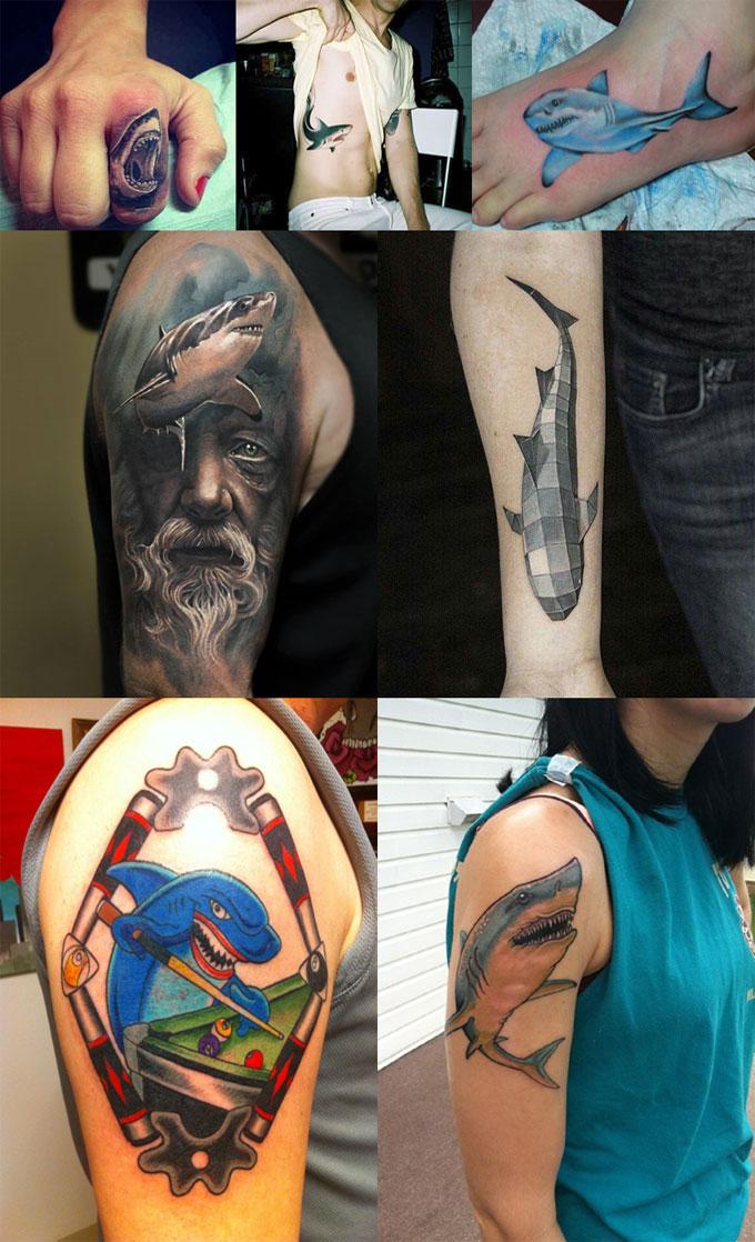 Виды татуировок с акулами