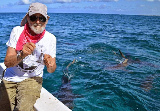 Фото: увлечение акулами и мания