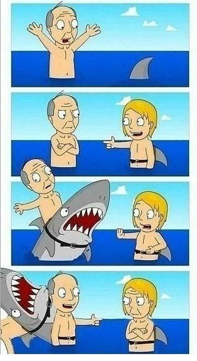 Акула обман