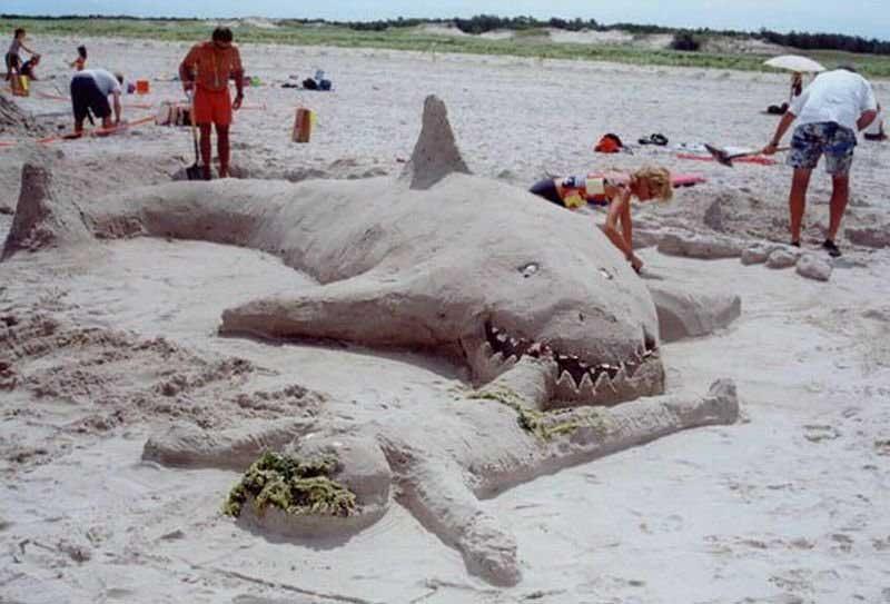 Акула напала на пляже