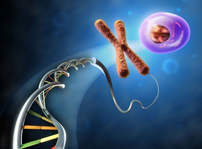 Генная инженерия: запрещенные препараты в спорте