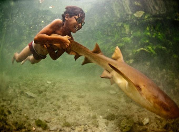 Фото: Гавайцы играют с акулами