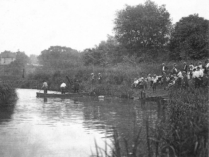 Нападения акулы-убийцы в реке Матаван в 1916 году
