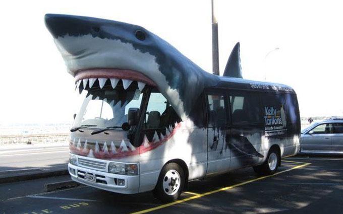 Фотография оригинальной рекламы - автоакула