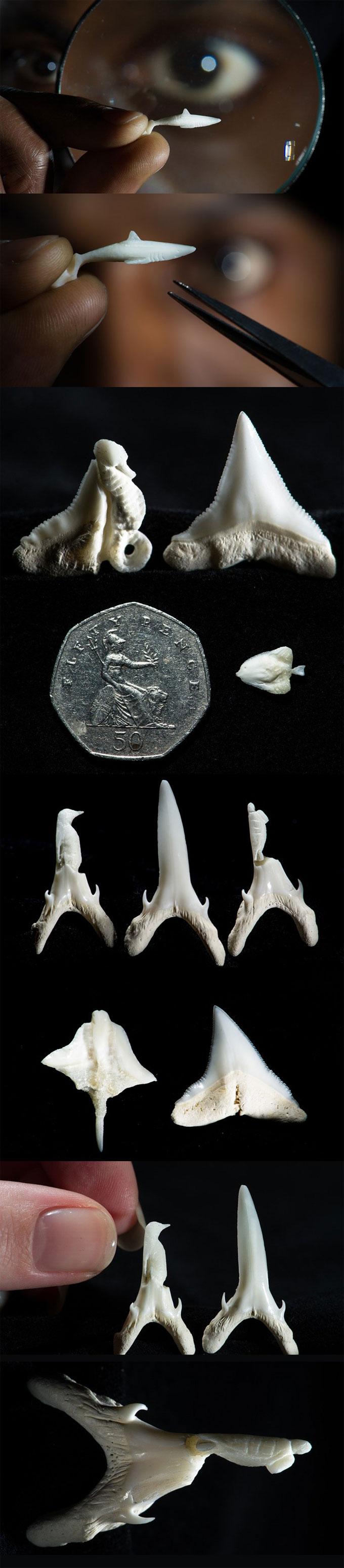 Микро-скульптуры животных из зубов акулы