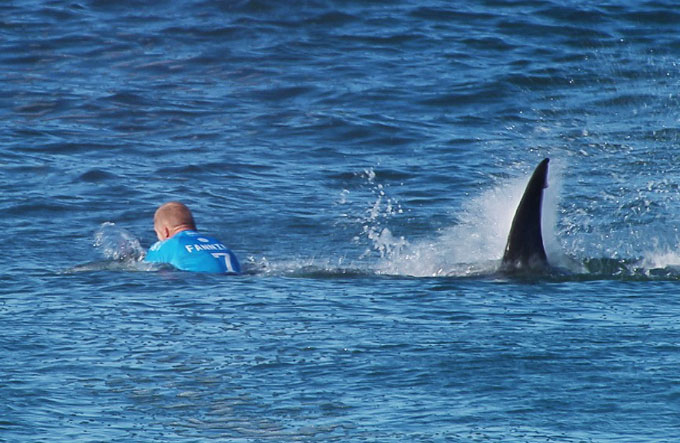 Фото: акула напала на серфера Мика Фэннинга