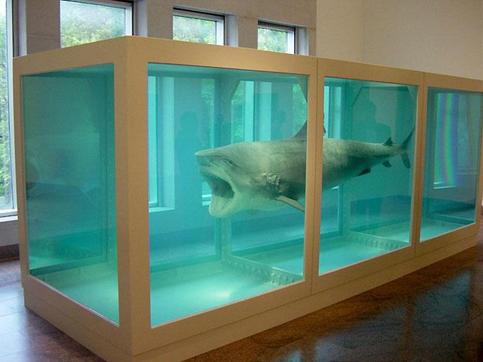 Резервуар с акулой в формальдегиде