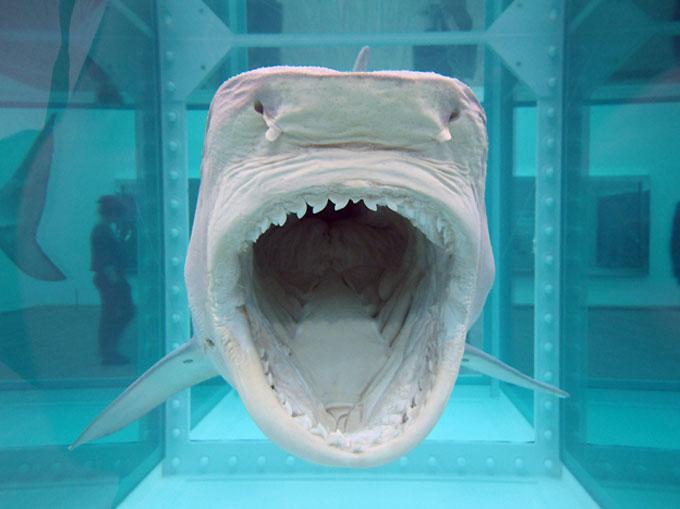 Акула в формалине в галерее Саатчи