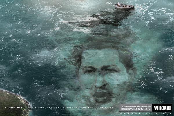 Уго Чавес, нефть и акулы - WildAid