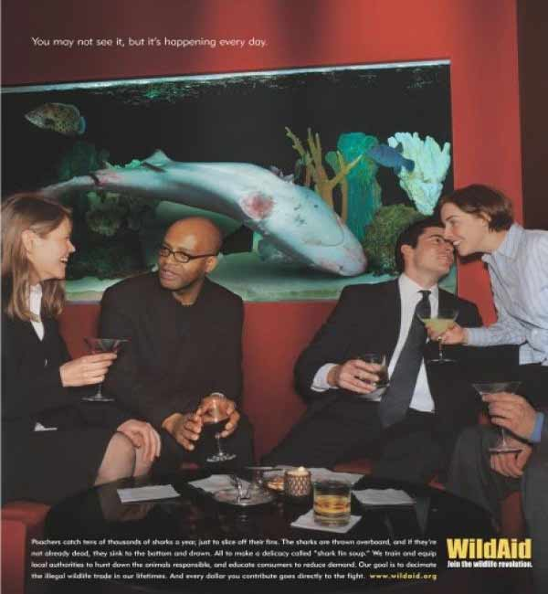 Шоковая реклама WildAid - мертвая акула
