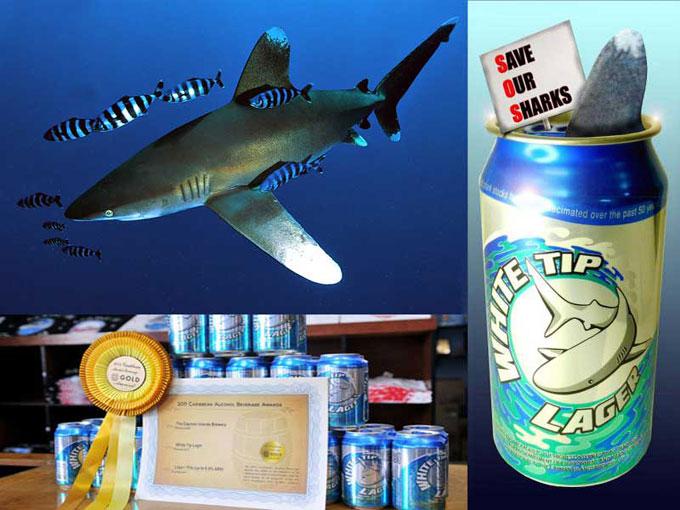 Акция: выпей пива - спаси акулу white tip shark