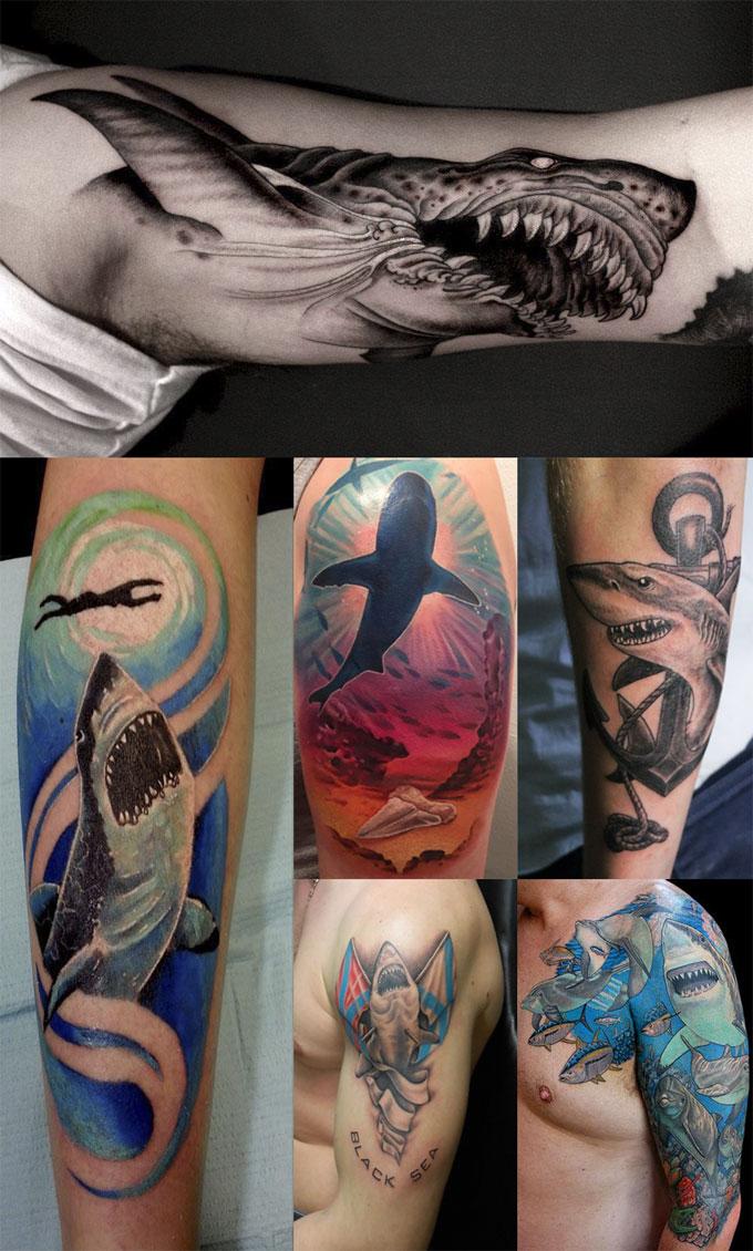 Фотография татуировки акулы на плече