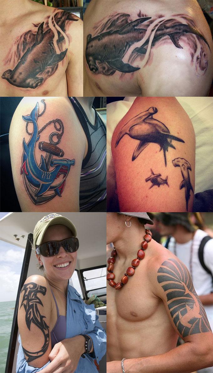 Татуировка акула-молот на плече