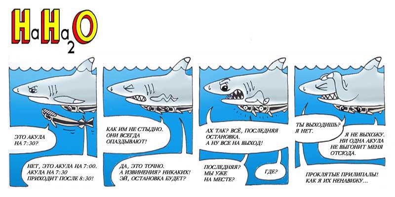 Акула и прилипалы