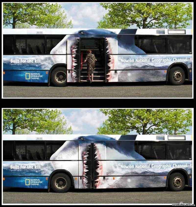 Акула автобус