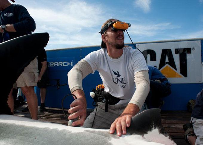 Фото: ультразвуковая сонограмма акулы