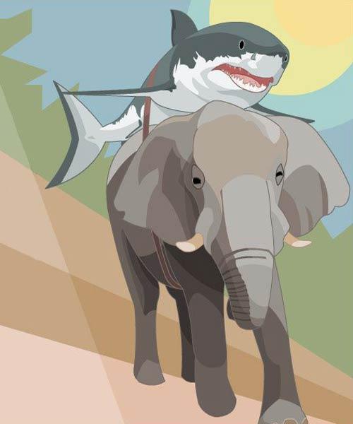 Любовь с первого взгляда - слон и белая акула
