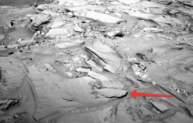 Фото: На Марсе обнаружена жизнь - моря и океаны планеты