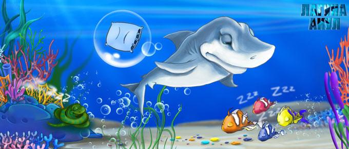 Как спят акулы? - Морская сказка